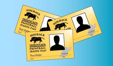 illustration of gold season pass id cards on a blue background